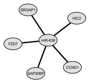 Figure 1 C